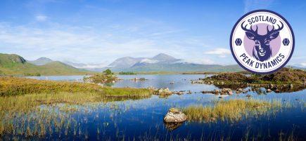 Scotland-Banner