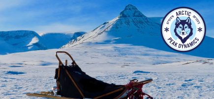 arctic-doglsled-banner