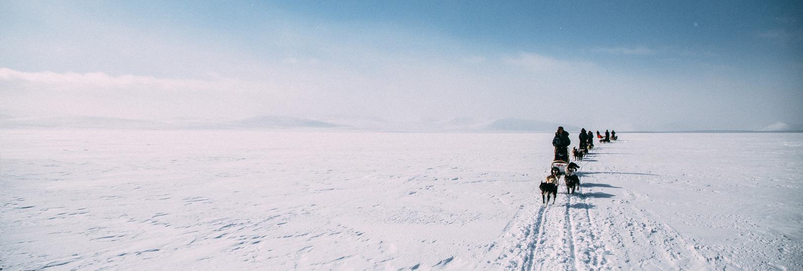 banner-arctic2